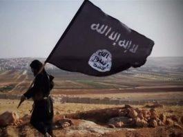 monza terrorismo nuovabrianza
