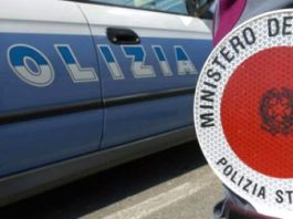 monza due orsetti polizia stradale